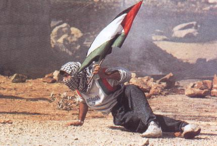 20140705221401-palestina-1.jpg