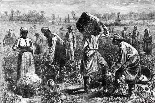 20200920171010-3162451-slave-on-a-cotton.jpg
